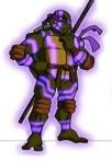 Ninja Tribunal Donatello Série TV 2003 Tortues Ninja Turtles TMNT